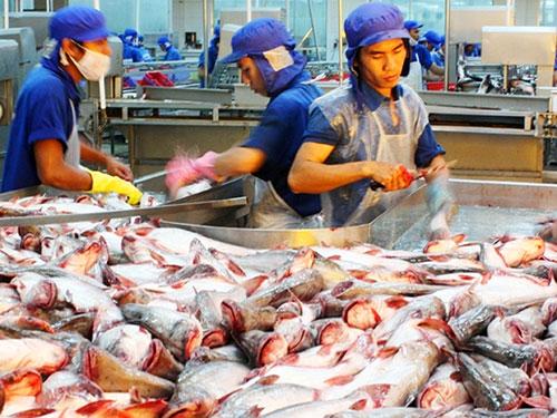 Sản phẩm cá tra Việt Nam đang được thị trường Nga ưa chuộng Ảnh: THANH VÂN