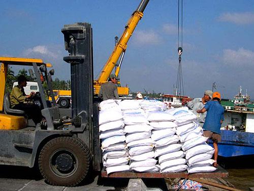 Gạo là mặt hàng Việt Nam xuất sang Nga Ảnh: NGỌC TRINH