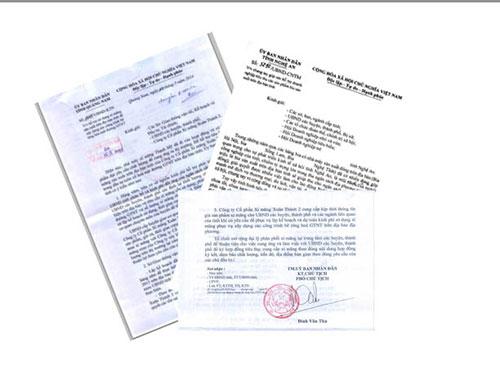 Những công văn kêu gọi sử dụng xi-măng và bia do các tỉnh Quảng Nam, Nghệ An ban hành
