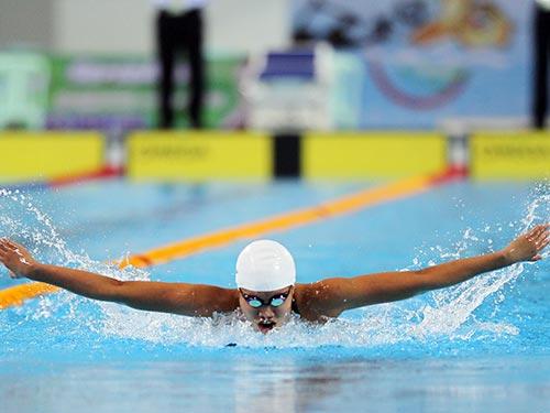 Ánh Viên tiếp tục sang Mỹ tập huấn để quyết tâm giành huy chương cho bơi lội Việt Nam tại Á vận hội Incheon - Hàn Quốc vào tháng 10-2014 Ảnh: Quang Liêm