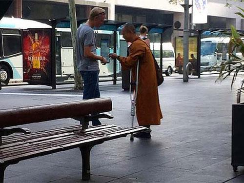 Sư giả lang thang trên nhiều đường phố tại Sydney Ảnh: SYDNEY MORNING HERALD