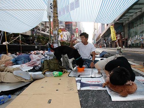 Người biểu tình bám trụ trên đường phố trung tâm Hồng Kông ngày 10-10 Ảnh: REUTERS