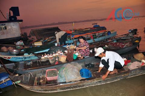 Xuồng đánh lưới cá bông lau về bến Củi chợ An Châu bán cá.