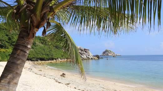 Đảo Koh Tao là địa điểm ưa thích của các thợ lặn nhưng thu hút ít du khách hơn các khu du lịch lân cận. Ảnh: Sky News
