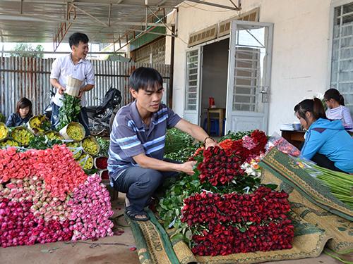 Đóng gói hoa đưa đi tiêu thụ tại một cơ sở ở TP Đà Lạt