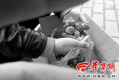 Vỏ cây thuốc phiện được sử dụng như gia vị ở một số nhà hàng Trung Quốc. Ảnh: Hsw.cn