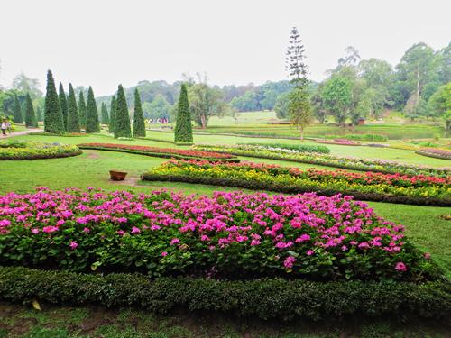 Pyin Oo Lwin nổi tiếng với vườn quốc gia Kandawgyi.