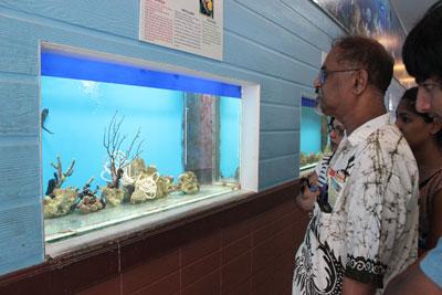 Khách du lịch ngắm cá ngựa nuôi ở Viện Hải dương học.