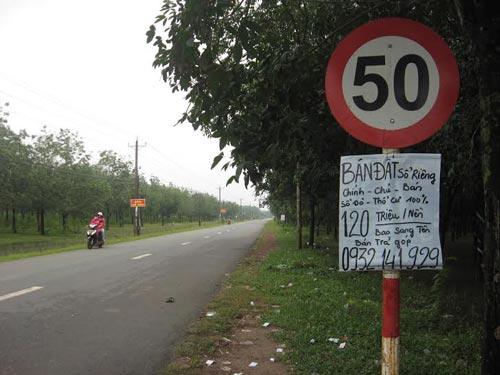 Người dân treo giấy bán đất trải dài theo đường Bưng Môn, xã Long An, huyện Long Thành