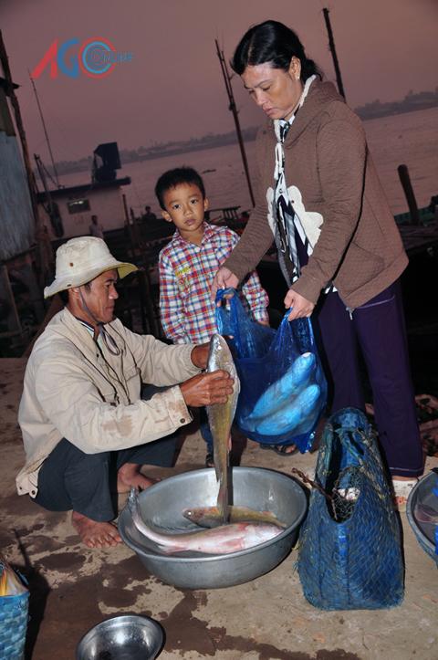 Chị Tiền cân mua cá bông lau của ngư dân tại bến Củi.