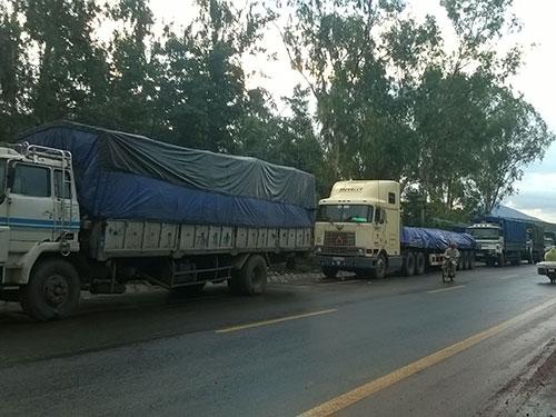 Xe tải đậu thành hàng dài dọc đoạn qua đèo Sao Mai, cửa ngõ vào TP Kon Tum, tỉnh Kon Tum chờ thời cơ vượt trạm Ảnh: HOÀNG THANH