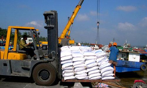 Bốc dỡ hàng hóa tại cảng Cái Cui (TP Cần Thơ) Ảnh: NGỌC TRINH