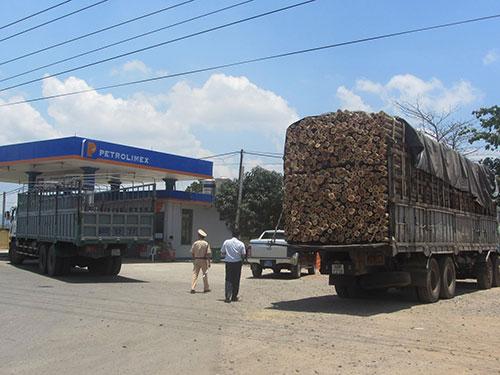 Một chiếc xe quá tải bị lực lượng chức năng tỉnh Bình Thuận bắt giữ ngày 24-4Ảnh: Bạch Long