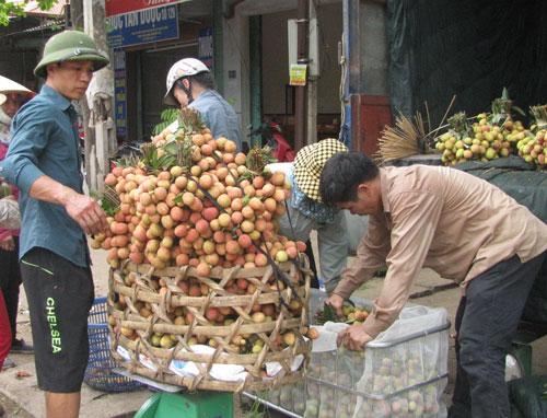 Vào được thị trường Mỹ khó tính, chất lượng và giá bán của trái vải Việt Nam sẽ được nâng lên đáng kể  Ảnh:  THANH XUÂN