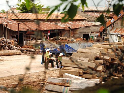 Lực lượng chức năng kiểm kê gỗ tại xưởng số 93 đường Y Wang của Công ty Hiền Thái