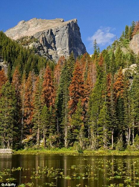 Vườn quốc gia Rocky Mountain ở bang Colorado - Mỹ.