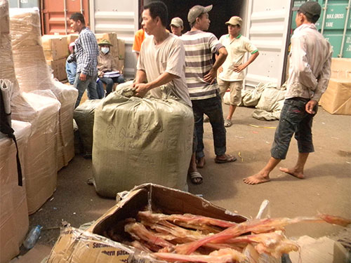 Gân khô động vật được phát hiện trong các container hàng nhập khẩu từ Trung Quốc sau khi thông quan tại VICT Ảnh: NGỌC ÁNH