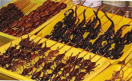 Các món ăn từ côn trùng khác