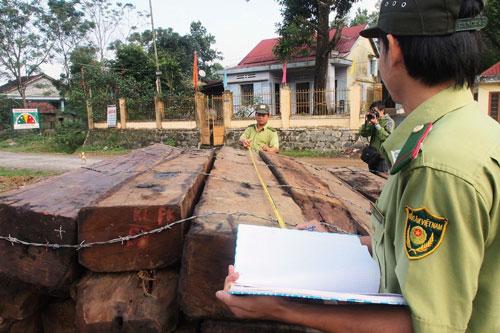 Hai trong số hàng chục phách gỗ tang vật này đã mất Ảnh: CÔNG THÀNH