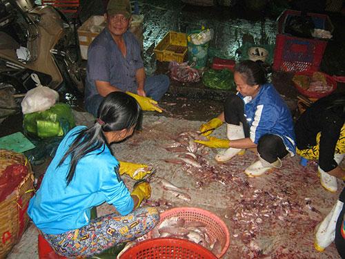 Chú Hai kiếm được khoảng 150.000-200.000 đồng/đêm từ công việc làm cá thuê