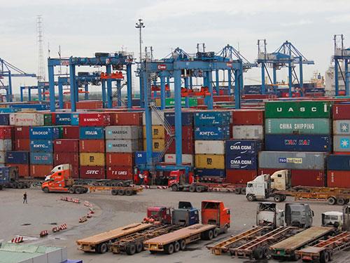 Doanh nghiệp kêu ca về việc tăng quá nhiều loại phí tại cảng Cát Lái Ảnh: HOÀNG TRIỀU