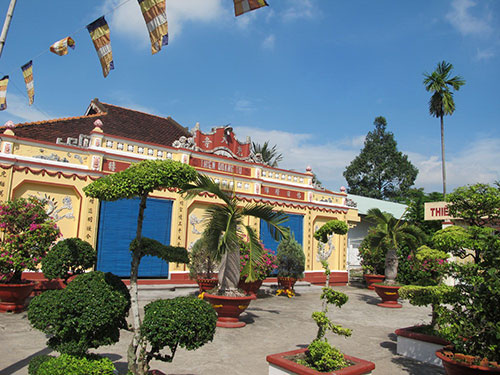 Cây sao ở chùa Thiên Quang