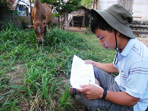 """""""Cậu bé chăn bò"""" tranh thủ mọi lúc, mọi nơi để ôn bài, đọc sách"""