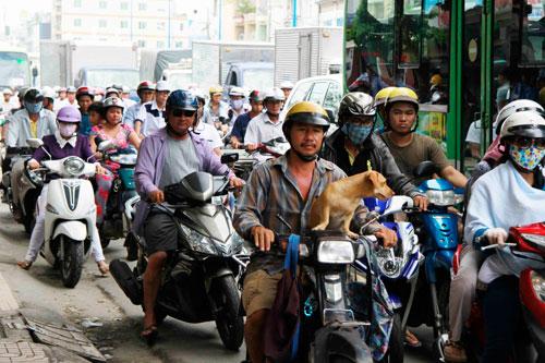 Các tuyến đường quanh khu vực cầu Ông Buông (quận 6, TP HCM) kẹt xe nghiêm trọng. Trong ảnh: Kẹt xe tại đường Hậu Giang Ảnh: HOÀNG TRIỀU