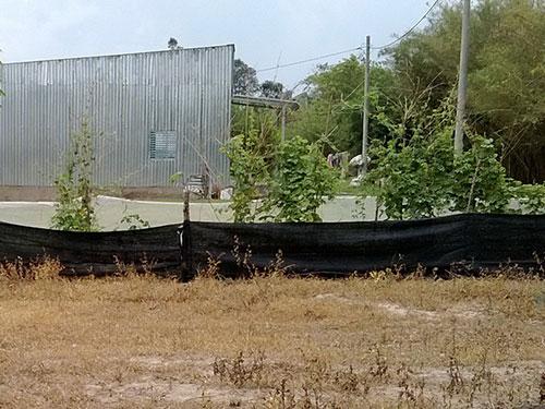 Một khu đất được phân lô bán nền ở ấp Mũi Lớn 1, xã Tân An Hội