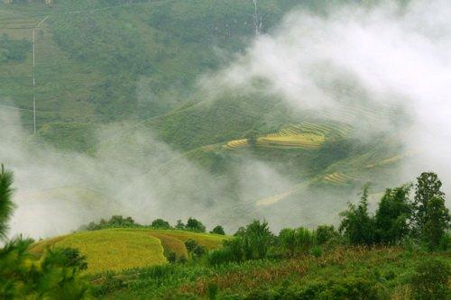 Mây như một làn sương mỏng bay trên một thửa ruộng bậc thang ở Ma Lé, huyện Đồng Văn - Ảnh: K.Hưng
