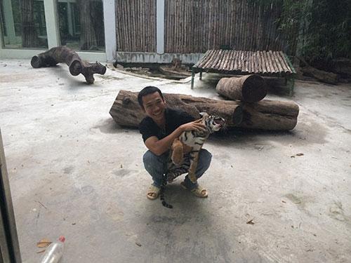 Với các nhân viên ở Thảo Cầm Viên, nuôi hổ cũng khổ như nuôi trẻ nhỏ