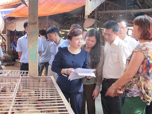 Bộ trưởng Bộ Y tế Nguyễn Thị Kim Tiến kiểm tra hoạt động buôn bán gia cầm ở Lạng Sơn Ảnh: Ngọc Dung