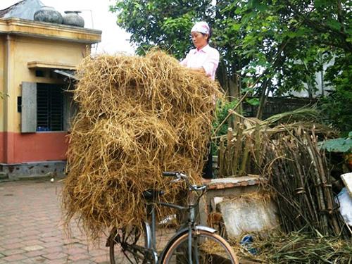 Bà Phạm Thị Tình - ở thôn 8, xã Tượng Văn - đang chuẩn bị rơm để hôm sau đi bán Ảnh: TUẤN MINH