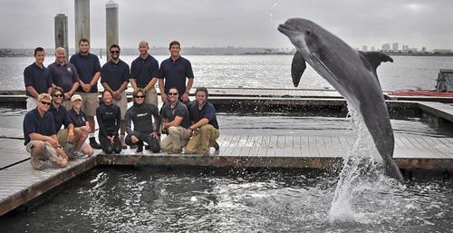 Trung tâm huấn luyện cá heo ở San Diego - Mỹ Ảnh: AP