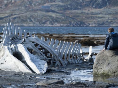 Cảnh trong phim Leviathan, tác phẩm được chọn đại diện cho Nga dự tranh Oscar 2014 dù nội dung mang hướng đả phá chính quyền gây tranh cãi Nguồn: The Guardian