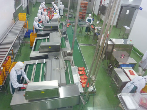 Dây chuyền đóng gói xúc xích tại Nhà máy chế biến thực phẩm thịt C.P. Phú Nghĩa (Xuân Mai, Hà Nội)