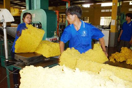 Nguyên liệu cao su trong nước ế thừa nhưng nhà sản xuất cao su công nghiệp phải nhập khẩu. (Ảnh chỉ có tính minh họa) Ảnh: INTERNET