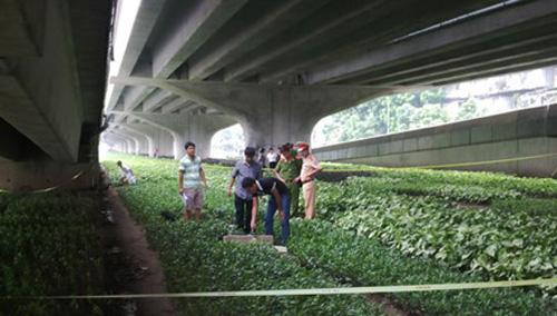Miệng cống ngầm dưới đường trên cao, nơi phát hiện thi thể võ sư Trần Quang Hưng