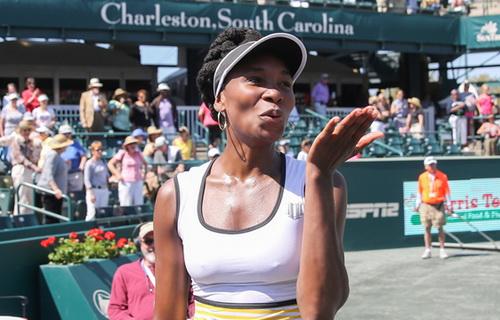 Venus Williams đang từng bước tìm lại hình ảnh của chính mình