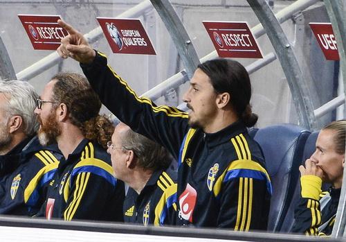 Zlatan Ibrahimovic bất lực, Thụy Điển chỉ có kết quả hòa trên sân nhà