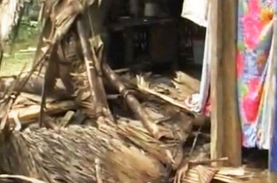 Nhà của người dân ở bản Cao Vều (xã Phúc Sơn) bị đàn voi rừng này phá nát vào ngày 1-2-2014.