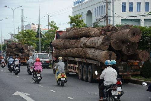 Hai xe tải chở gỗ vượt quá tải trọng bị xử phạt