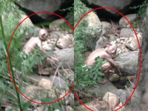 Sinh vật bí ẩn được chụp tại khe núi gần Bắc Kinh