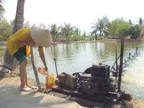 Không có điện, người dân phải dùng máy nổ để chạy quạt sục ôxy cho tômẢnh: Đức Lâm