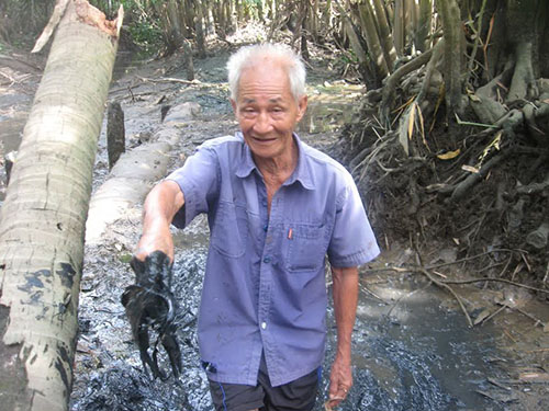 Người dân khốn đốn khi vườn tược bị ô nhiễm do Công ty CP Sonadezi Long Thành xả bẩn