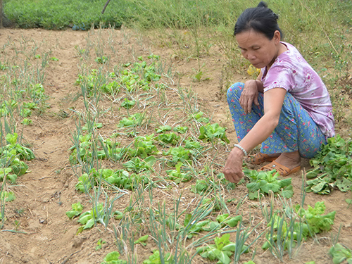 Bà Lương Thị Khôi bên mảnh vườn khô cằn ở nơi tái định cư