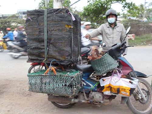Đoàn liên ngành huyện Bình Chánh bắt giữ xe chở gia cầm trái phép trên đường cao tốc