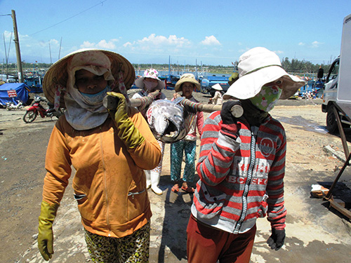 Những người phụ nữ làm nghề rảo cá ở tỉnh Phú Yên luôn tự ti vì ít chữ Ảnh: HỒNG ÁNH
