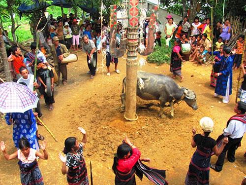 Những gia đình có điều kiện tổ chức đám cưới lớn trong đó có lễ hội đâm trâu Ảnh: NGUYÊN ĐĂNG
