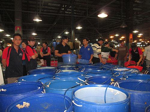 Từ nay đến Tết Nguyên đán, lượng hàng hóa về chợ Bình Điền tăng bình quân 20%-25% so với ngày thường